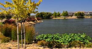 Cypress Grove Park 2